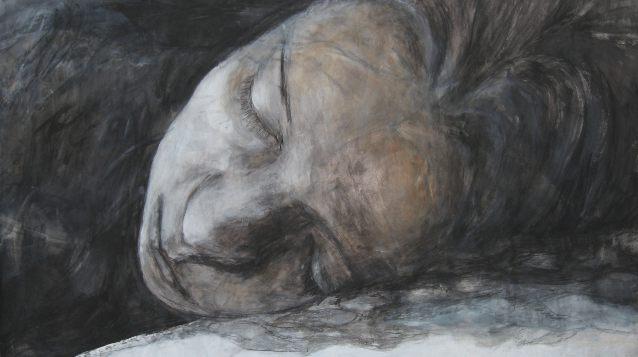 slapen 2011
